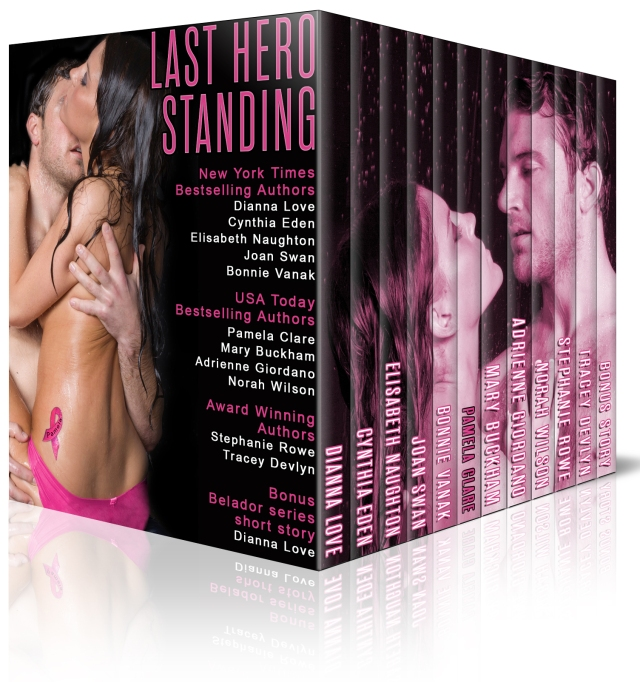 MOCK COVER FOR LAST HERO STANDING designed by Brandy Walker.
